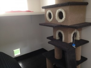 large cat tree 2